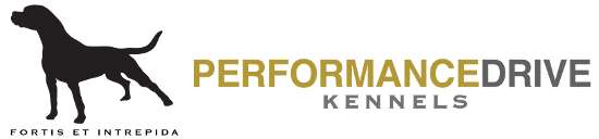 Performance Drive Kennels - American Bulldog Breeders